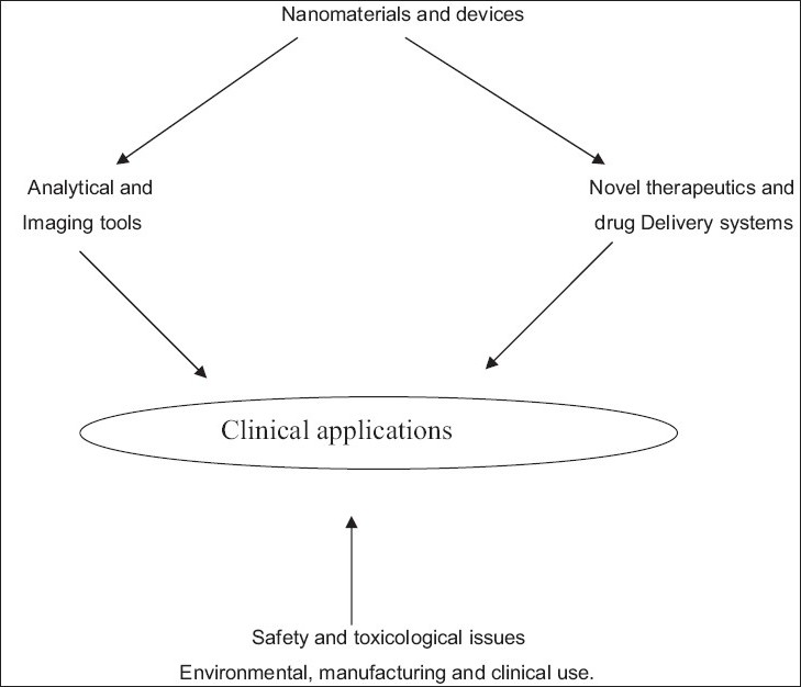 Figure 1 :Dimensions in Nanomedicine