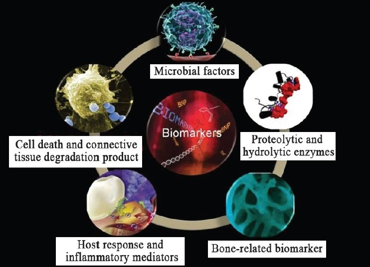 critical analysis of ageing biomarkers Critical analysis of aging biomarkers introduction biomarkers have been used since 1980, in aging and age related diseases the usage of biomarkers helps increase the apprehension of a disease and aid in diagnosing.