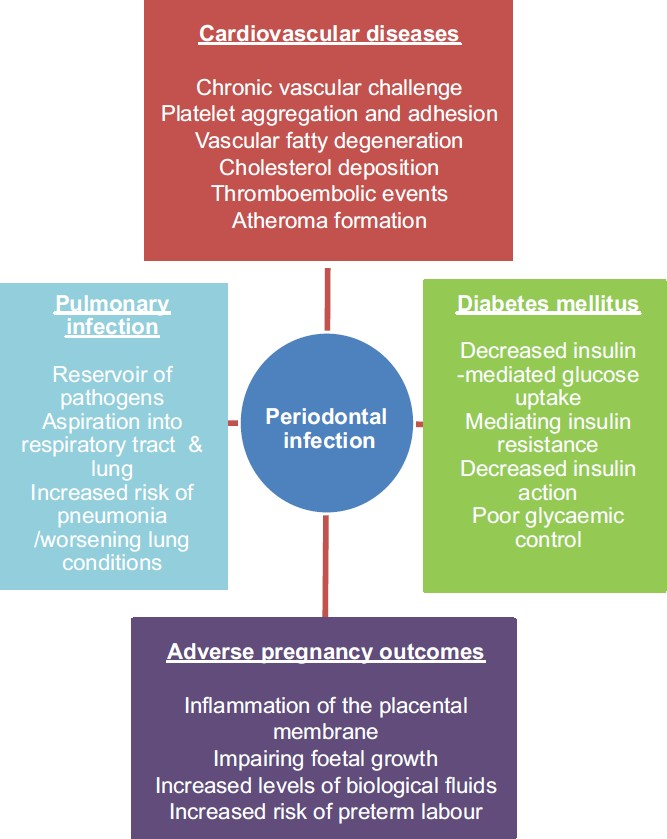 relationship of bacteria to the etiology periodontal disease